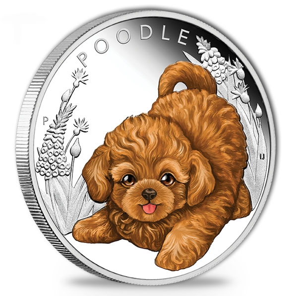 Puppies - Poodle - 1/2 Oz Silber Proof 2018 +Box +COA*