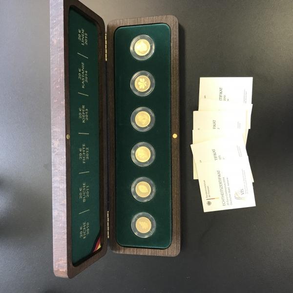 Deutscher Wald 6 x 1/8 Oz Gold mit Box, alle Motive