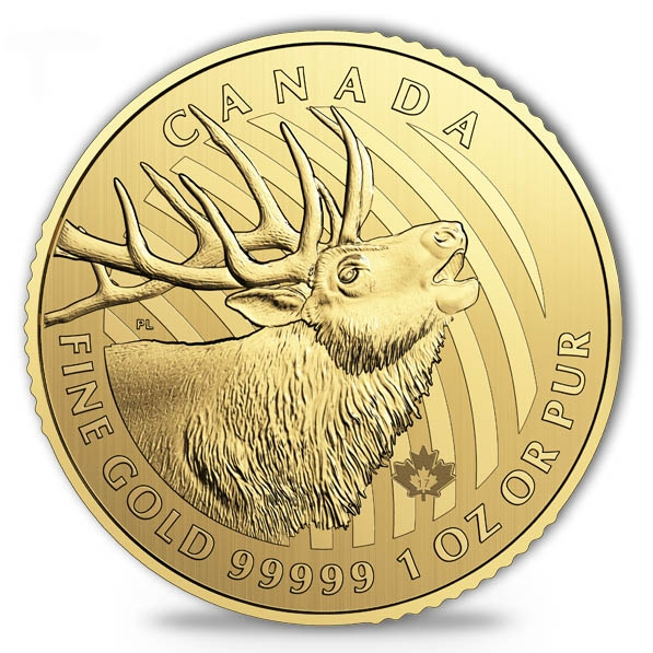 Call of the Wild - Elk - 1 Oz Gold im Blister 2017