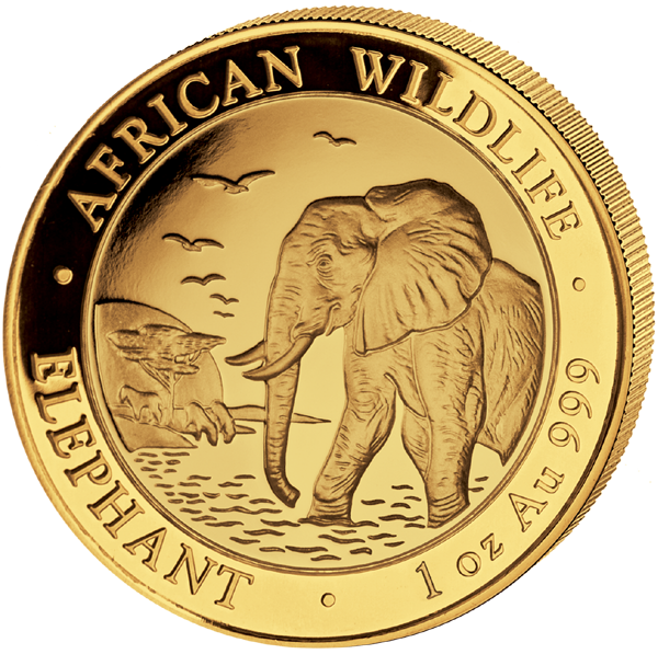 Somalia Elefant 1 Oz Gold 2010